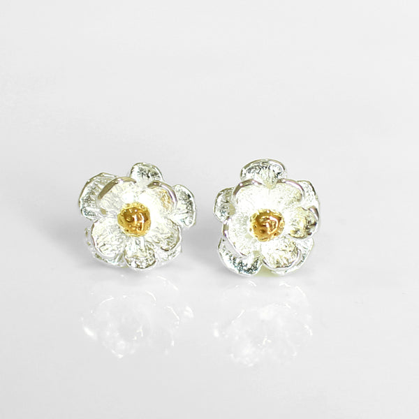 Mt Cook Lily studs