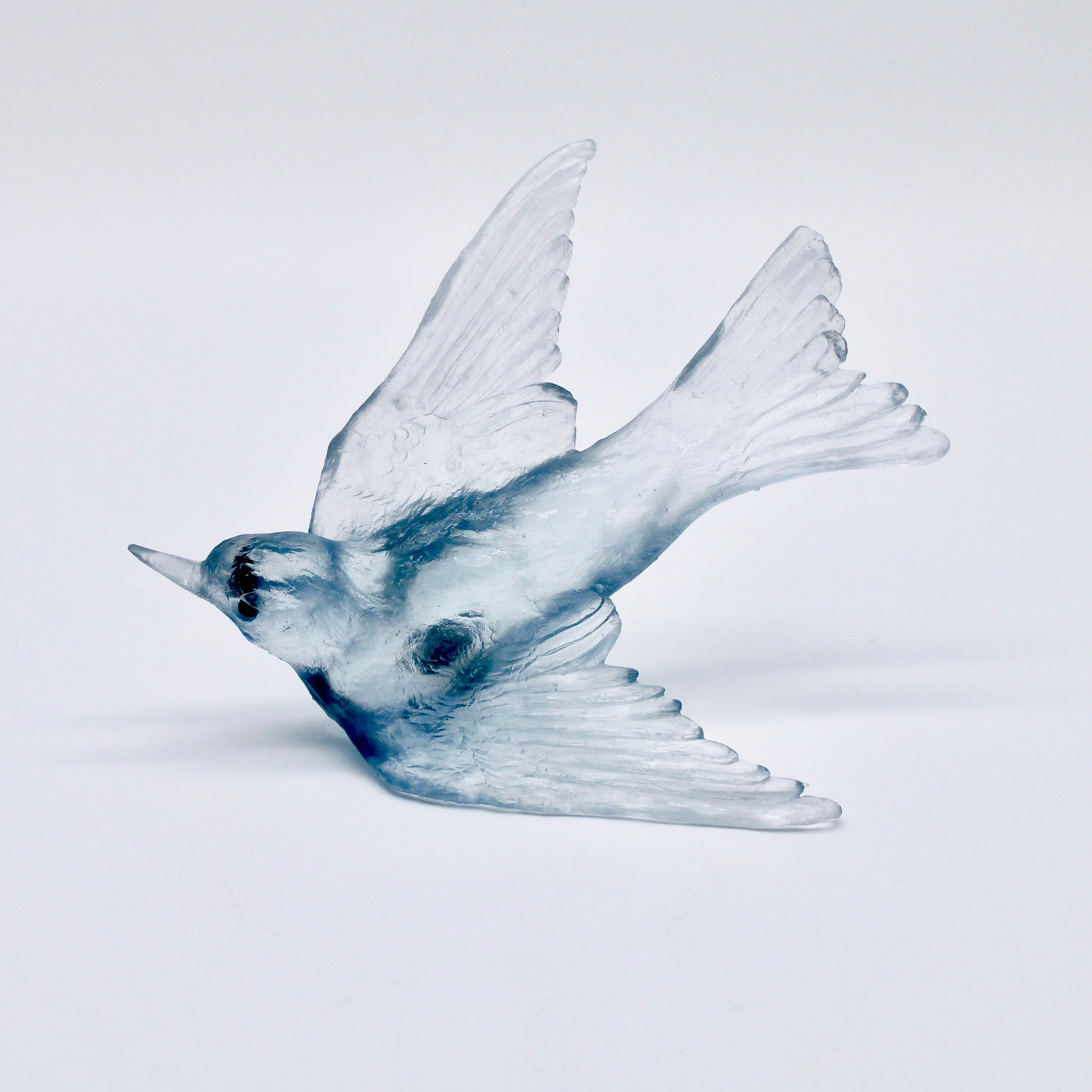 Swallow - Pale Steel Blue