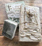The Makings of a Plaster and Wax Book Class