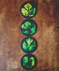 Grape Leaf Coasters | Loire Valley