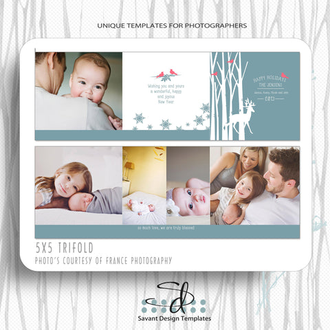 Christmas Card 5x5 Trifold Template by Savant Design Templates