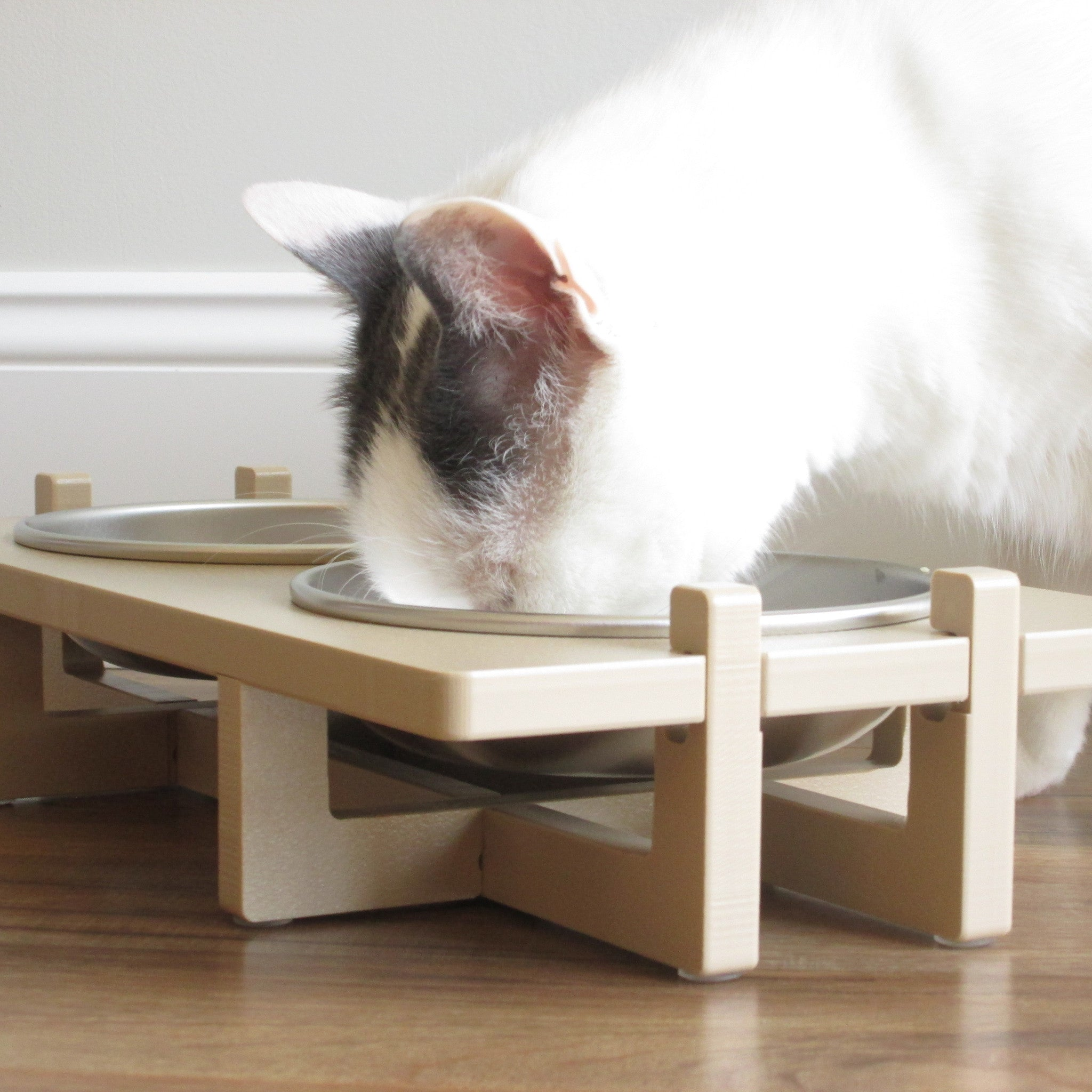 northmate interactive amazon automatic ca feeder pet for view catch larger dp feeders cats supplies cat