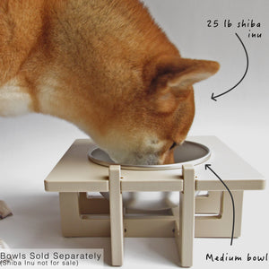 Rise Pet Bowl Stand For Medium Bowls, Single Bowl With Dog