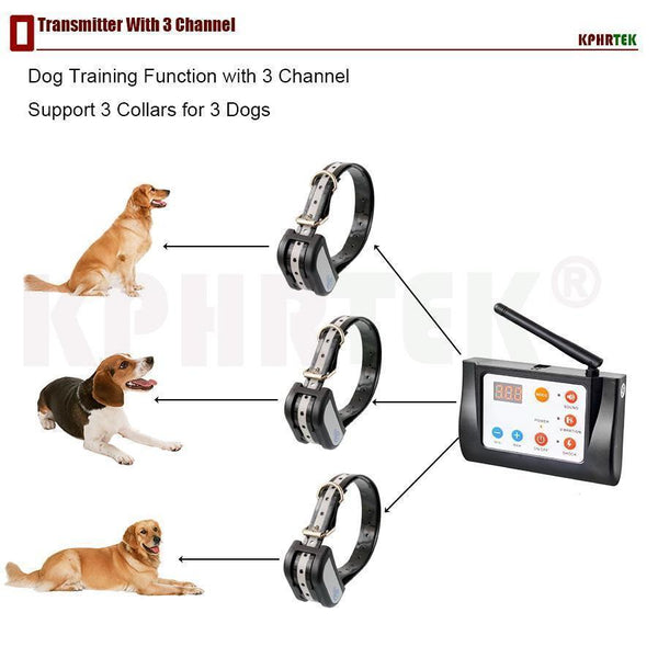 Wireless Dog Fence System