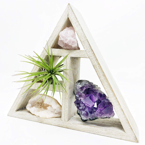 Air Plant And Crystals Gift Set by Three Bird Nest