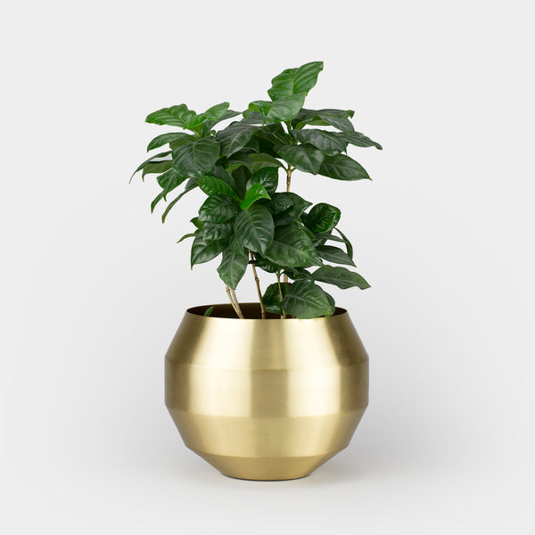 Pitch Planter