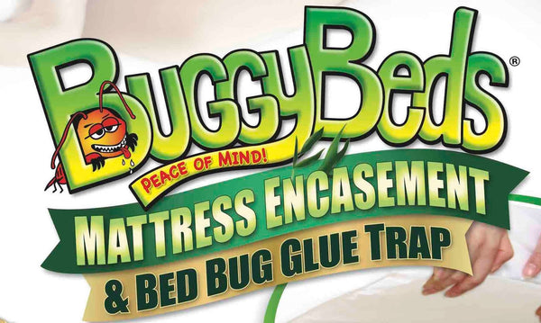 Bamboo Mattress Encasement and Bed Bug Glue Trap