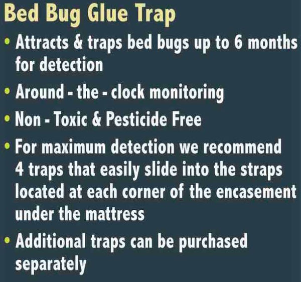 Luxury Mattress Encasement and Bed Bug Glue Trap