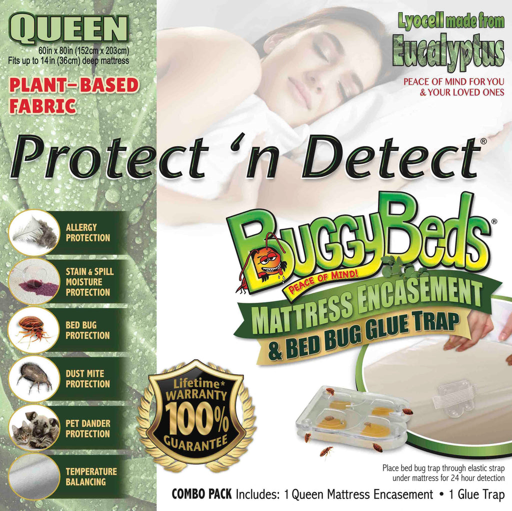 Eucalyptus Pillow Encasement