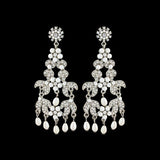 Arabella Pearl and Crystal Earrings