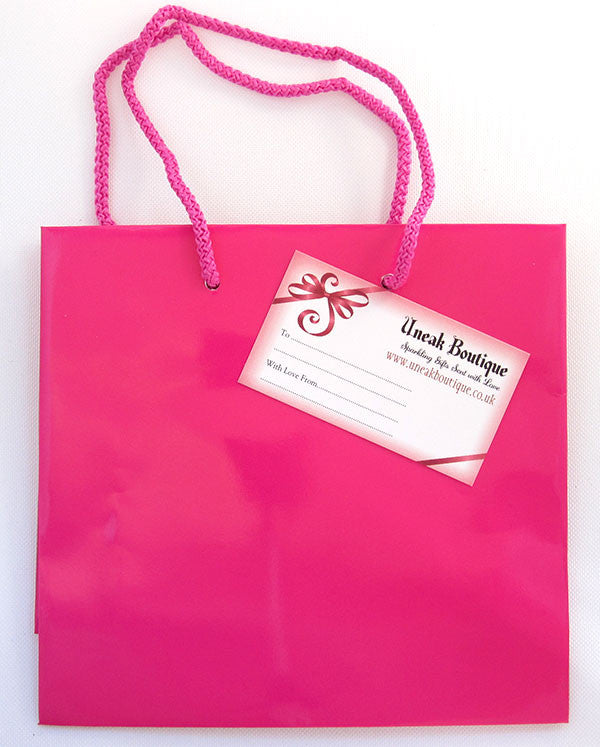 Small Hot Pink Glossy Gift Bag