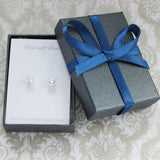 Checkerboard silver earrings