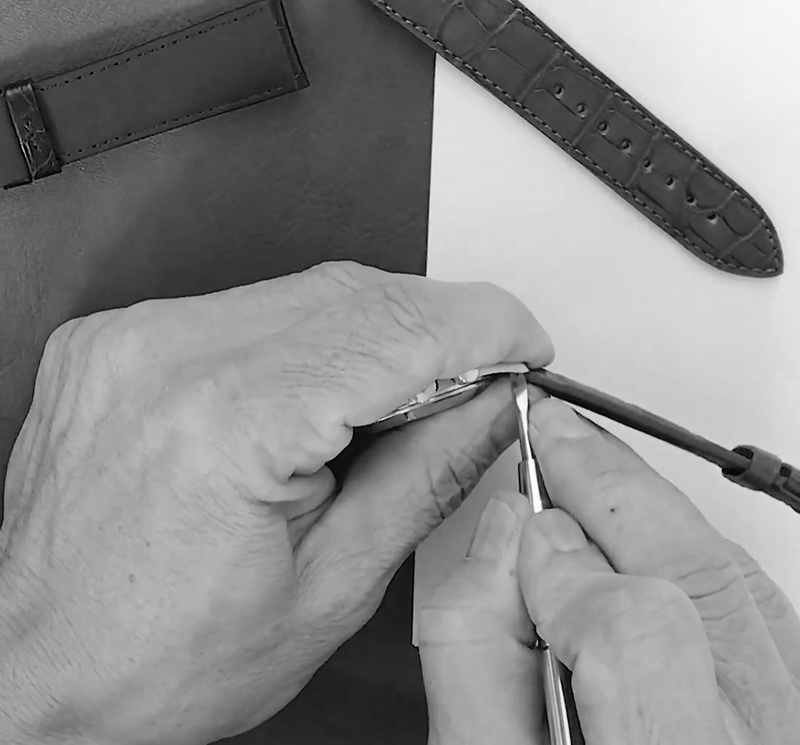 <transcy>Spring bars tool to disassemble and assemble the Black watch straps with protection</transcy>