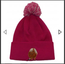 Load image into Gallery viewer, Beautiful Fat Ponies Bobble hats