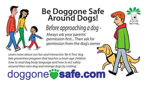 Be Doggone Safe Around Dogs Magnet