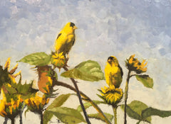 Goldfinches on Sunflowers