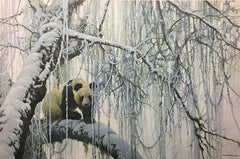 Winter Filigree - Giant Panda