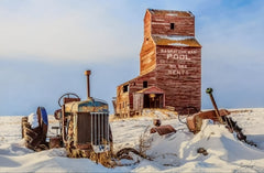 Prairie Relics in Winter