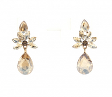 Load image into Gallery viewer, The Amour Earrings