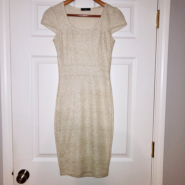 Small Alt. B Shimmery Fitted Dress