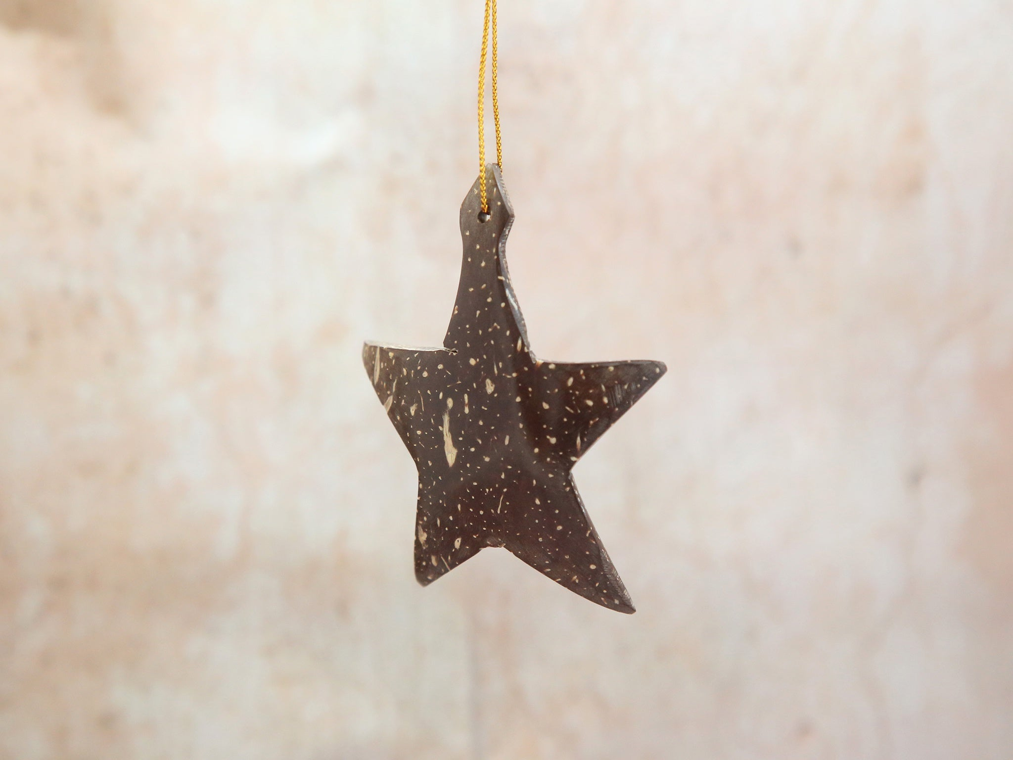 Ornament - Coconut Shell Star