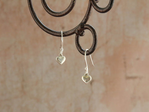 Earrings-Courageous Heart