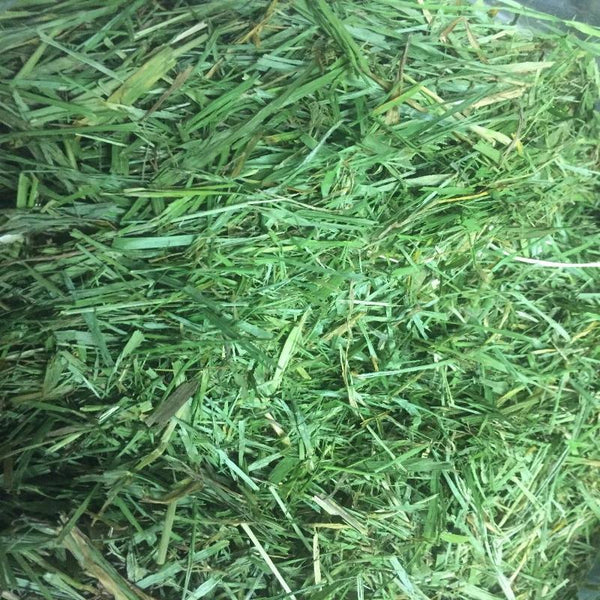 Freeze dried grass