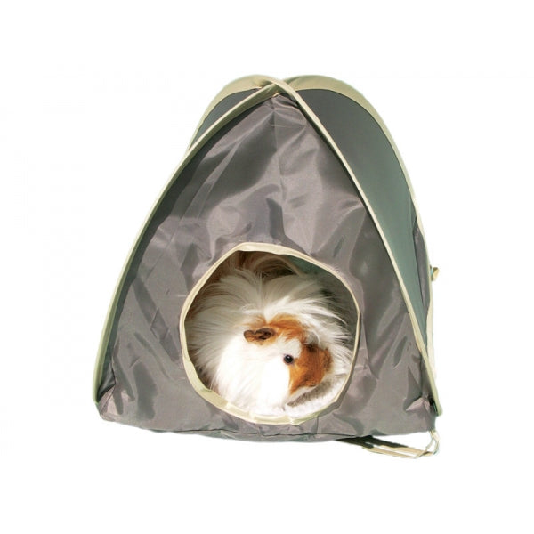 Pop up Tents