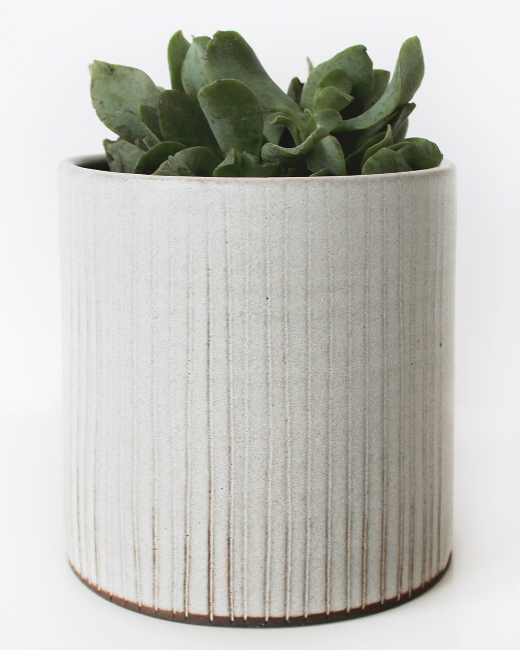 Textured White Stripe Planter | Bombabird