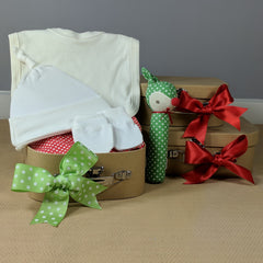 Little Green Reindeer Organic Baby Hamper