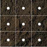 Plant Spacing Guide For Vegetables In A Square Foot Garden Ewood Solutions
