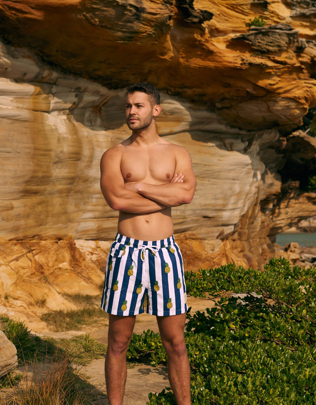 Men's Swim Shorts - Pineapples Navy/White Stripes
