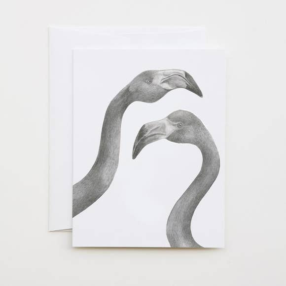 lecanotrouge Note Card : Iggy and Mags American Flamingo