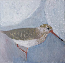 Load image into Gallery viewer, Bridgette Guerzon Mills: No. 52 Common Redshank, matted gouache painting