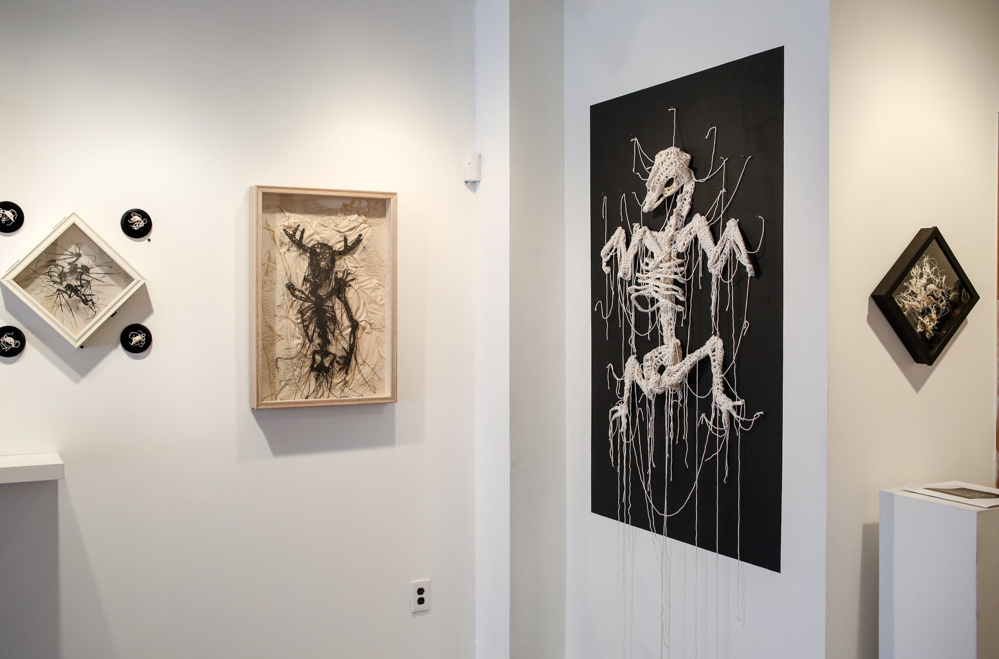 Caitlin McCormack at Paradigm Gallery + Studio