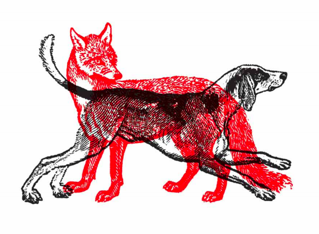 Fox / Hound (inverted) 2010