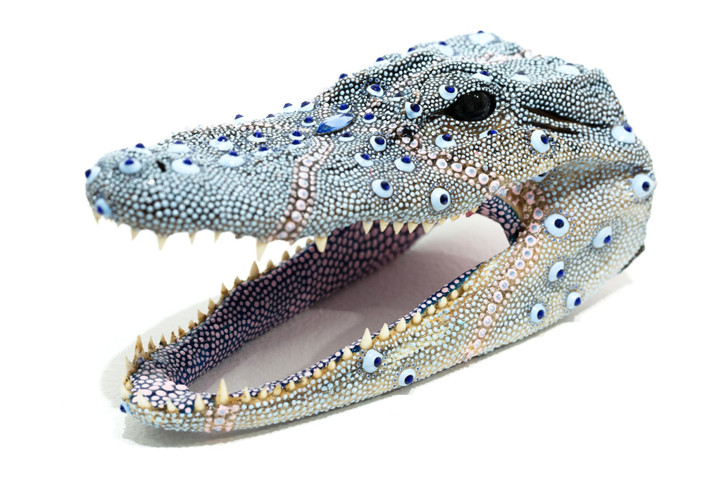 Blueberry Gator
