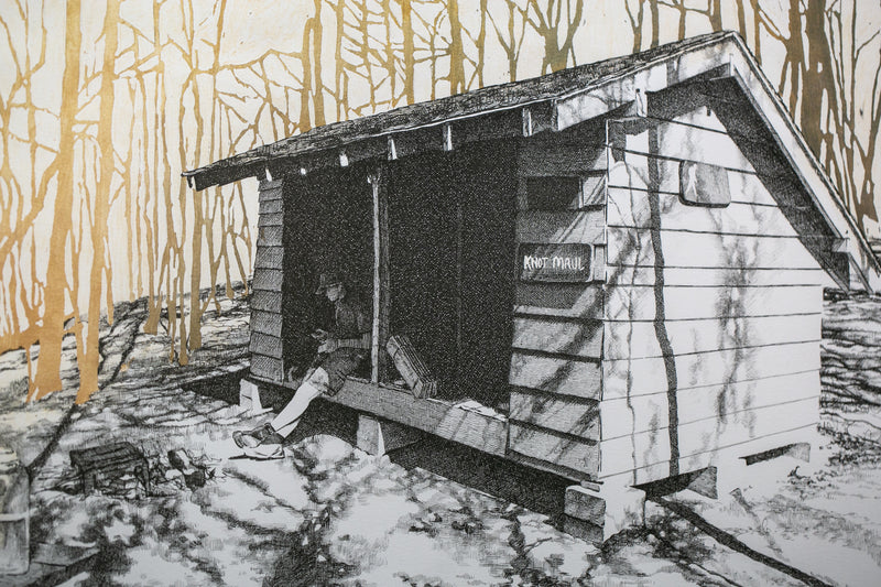 Knob Maul Shelter, Virginia, [ 37.0008, -8140446 ]