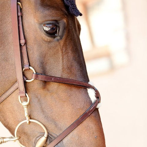 B Vertigo Eight Mexican Noseband