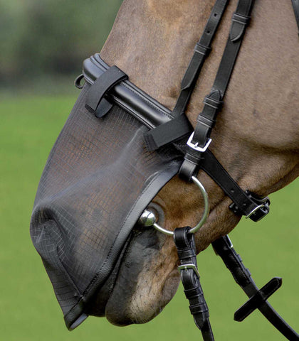 Waldhausen Horse Fly Cover for Nose