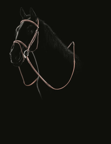 Equiline Bridle BJ105