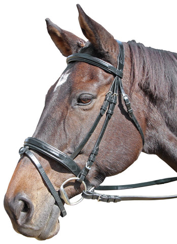 CAVALLINO RAISED & PADDED BRIDLE