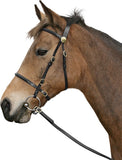 CAVALLINO INHAND BRIDLE