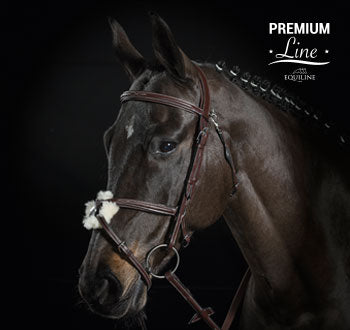 Equiline BS501 Mexican Across Bridle