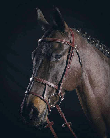 Equiline BS504 Double Band Nose Bridle