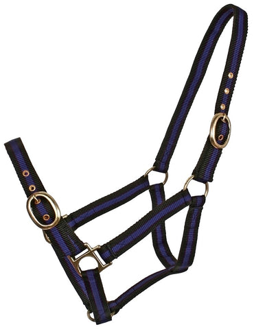 BLUE TAG STRIPED WEB HALTERS
