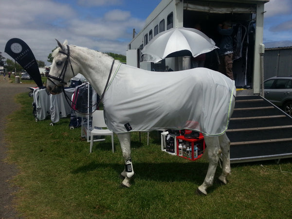 Equiline Flash Summer Gwen Fly Sheet