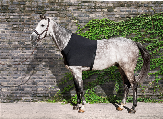 Equiline Edinburgh Anti-Rub Vest