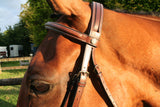 Equiline Detachable Flash Bridle BJ104