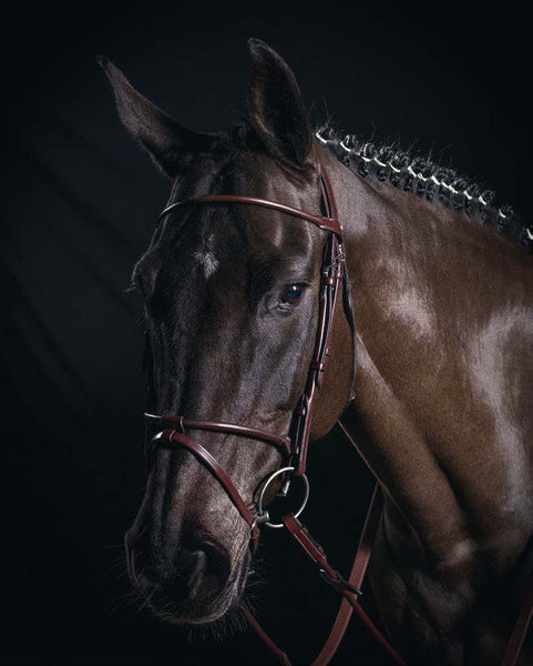 Equiline BS502 Sedgwick Leather Rolled Bridle